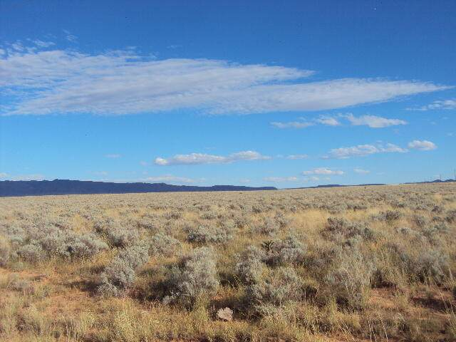 Rio Communities Boulevard, Rio Communities, NM 87002 (MLS #1002983) :: Campbell & Campbell Real Estate Services