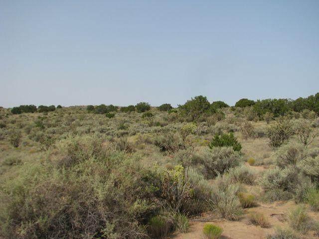 Virgo Road NE, Rio Rancho, NM 87144 (MLS #1003537) :: The Buchman Group