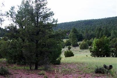 Lot 14 Sagebrush, Ramah, NM 87321 (MLS #863496) :: Campbell & Campbell Real Estate Services