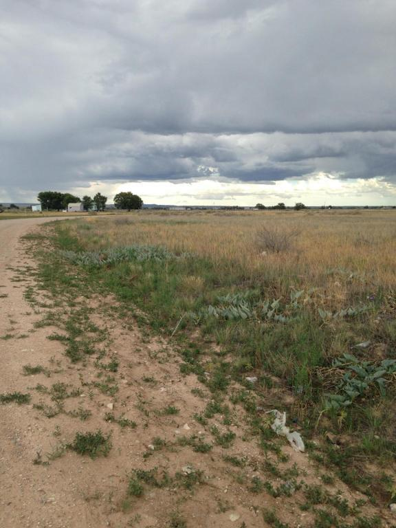 14  Meadow Road, Moriarty, NM 87035 (MLS #873927) :: Silesha & Company
