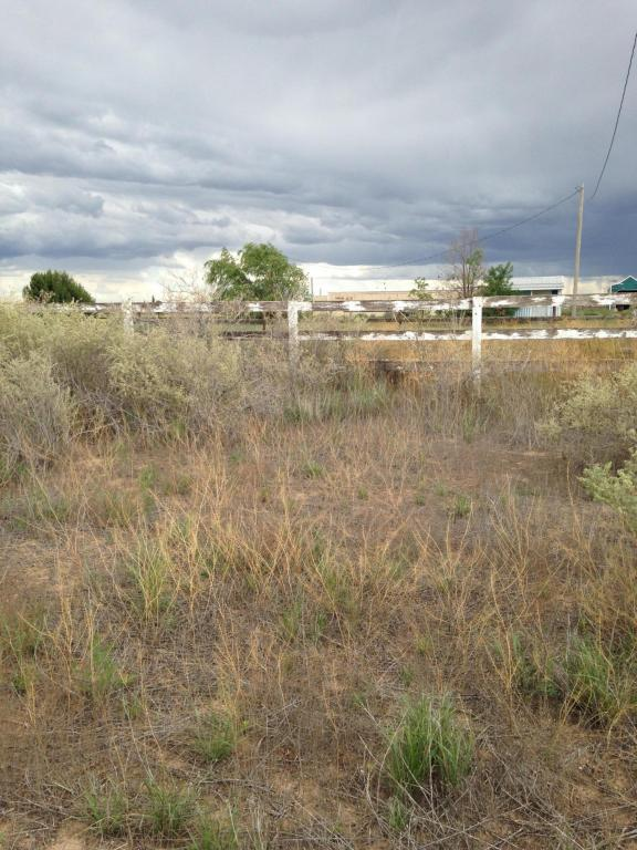 16 Meadow Court, Moriarty, NM 87035 (MLS #873930) :: Silesha & Company