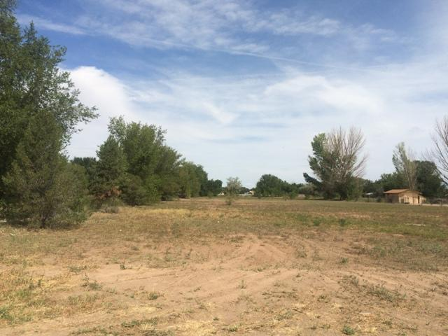 Morrison, Bosque Farms, NM 87068 (MLS #893592) :: Campbell & Campbell Real Estate Services