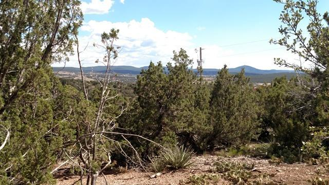 6 Angeles Vista Drive, Sandia Park, NM 87047 (MLS #897432) :: Campbell & Campbell Real Estate Services