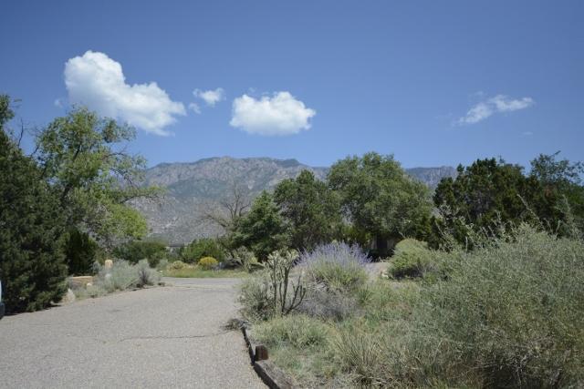 996 Lynx Loop NE, Albuquerque, NM 87122 (MLS #900987) :: Your Casa Team