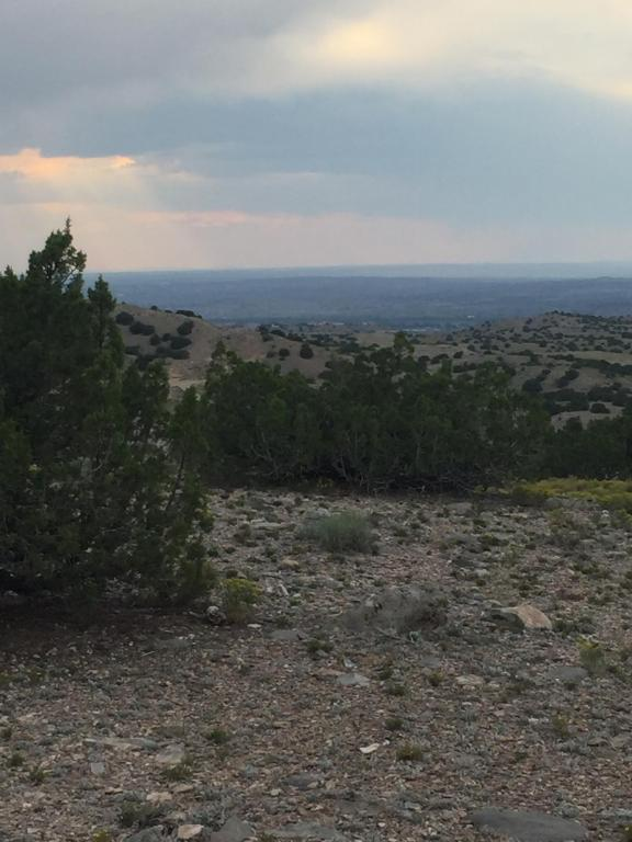 11 Hohokam Road, Placitas, NM 87043 (MLS #901556) :: Campbell & Campbell Real Estate Services