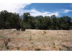 0 Rory Lane SE, Edgewood, NM 87016 (MLS #904114) :: The Stratmoen & Mesch Team
