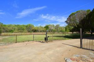 270 Sutton Lane, Bosque Farms, NM 87068 (MLS #904135) :: Rickert Property Group