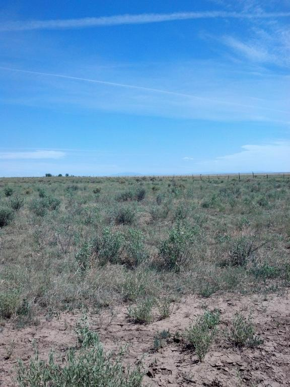 Valencia Road, Moriarty, NM 87035 (MLS #905471) :: Will Beecher at Keller Williams Realty