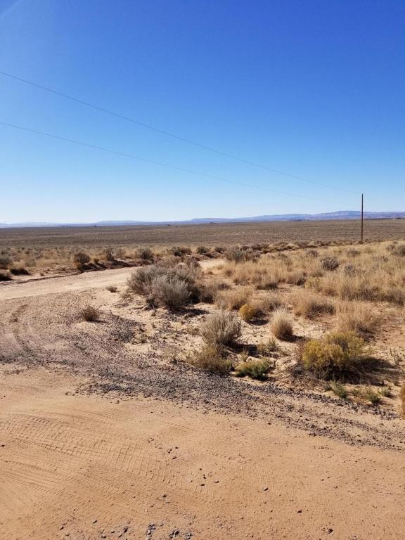 Hormiga Court, Los Lunas, NM 87031 (MLS #907107) :: The Bigelow Team / Realty One of New Mexico