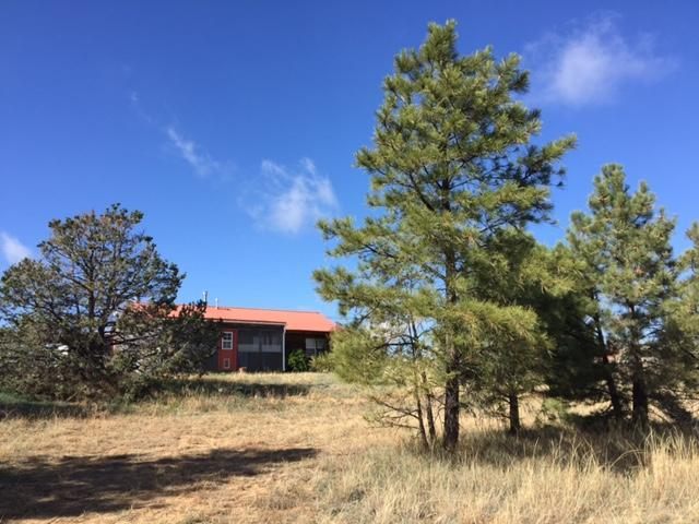2 Log Cabin Lane, Edgewood, NM 87015 (MLS #907116) :: Will Beecher at Keller Williams Realty