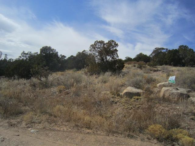 0 Monica, Edgewood, NM 87015 (MLS #910198) :: Campbell & Campbell Real Estate Services