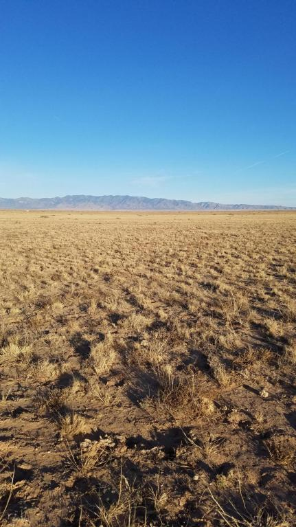 Rancho Rio Grande U 2 Lot 323C, Belen, NM 87002 (MLS #911318) :: Campbell & Campbell Real Estate Services