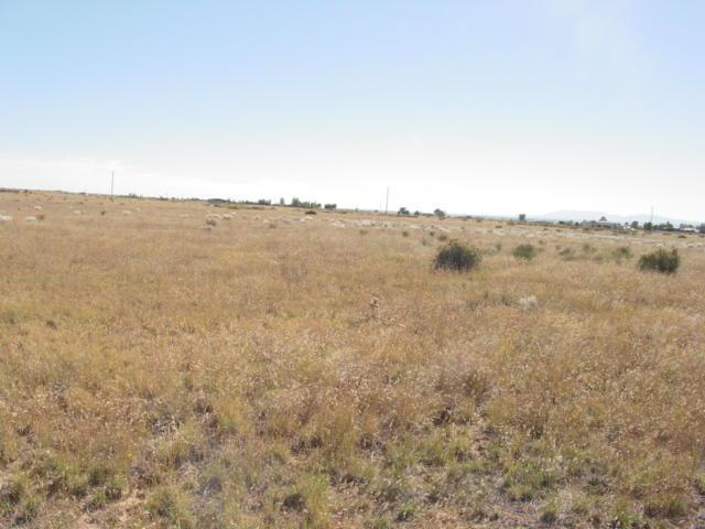 Martinez Road, Moriarty, NM 87035 (MLS #911517) :: The Bigelow Team / Red Fox Realty