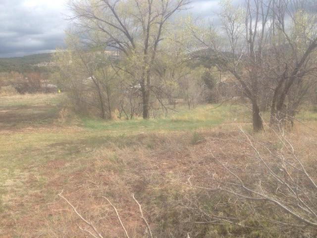 17 Tijeras Avenue, Tijeras, NM 87059 (MLS #911741) :: Will Beecher at Keller Williams Realty