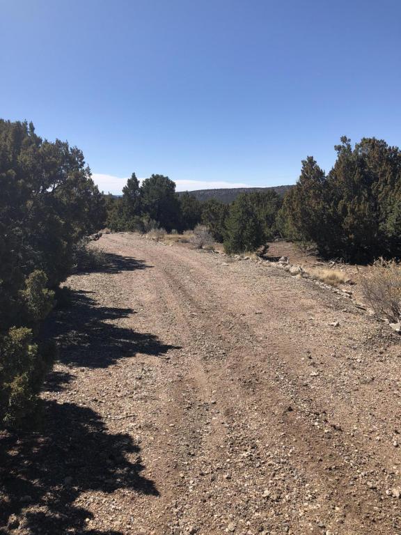 3 C Calle Gurule, Santa Fe, NM 87505 (MLS #913772) :: Silesha & Company