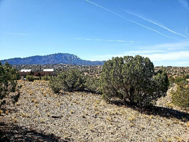 141 Windmill Trail, Placitas, NM 87043 (MLS #914598) :: Campbell & Campbell Real Estate Services