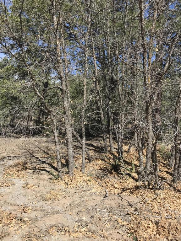 17 La Cresta Circle, Tijeras, NM 87059 (MLS #915957) :: Campbell & Campbell Real Estate Services