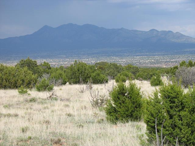 4 Calle Lomita, Sandia Park, NM 87047 (MLS #916053) :: Will Beecher at Keller Williams Realty