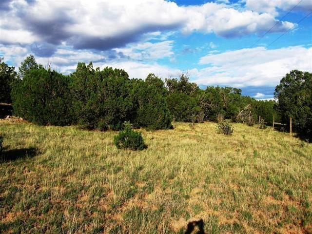 0 Double B Drive, Moriarty, NM 87035 (MLS #916075) :: Campbell & Campbell Real Estate Services