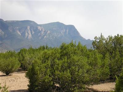 74 Anasazi Trails Road, Placitas, NM 87043 (MLS #916616) :: Will Beecher at Keller Williams Realty