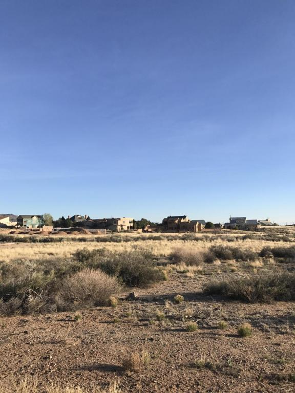 Palomas Road NE, Albuquerque, NM 87122 (MLS #917761) :: The Bigelow Team / Realty One of New Mexico
