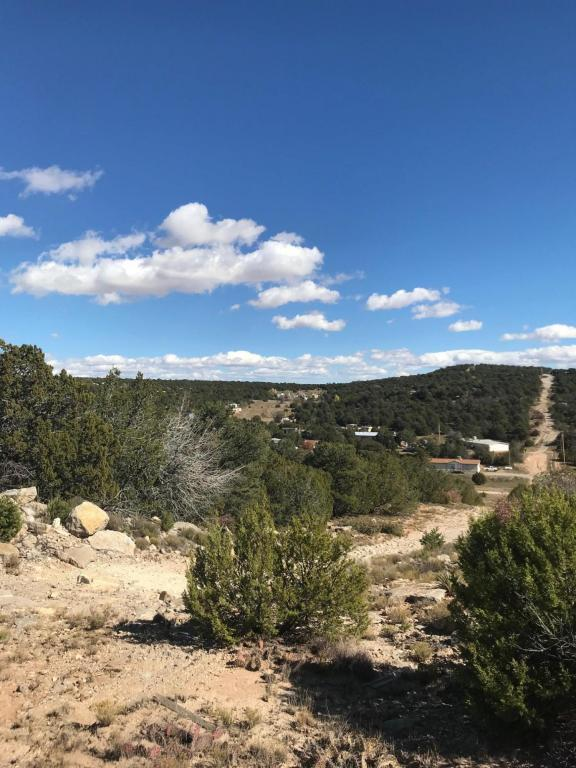 12G Learn Road, Edgewood, NM 87015 (MLS #919307) :: Campbell & Campbell Real Estate Services