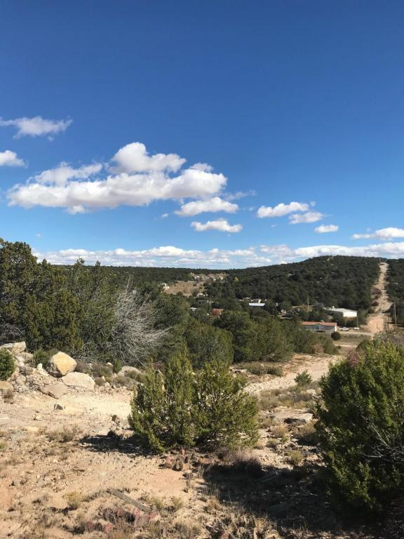 12H Learn Road, Edgewood, NM 87015 (MLS #919314) :: Campbell & Campbell Real Estate Services