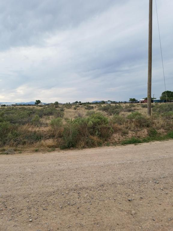 Calle Del Monte, Moriarty, NM 87035 (MLS #919480) :: Will Beecher at Keller Williams Realty