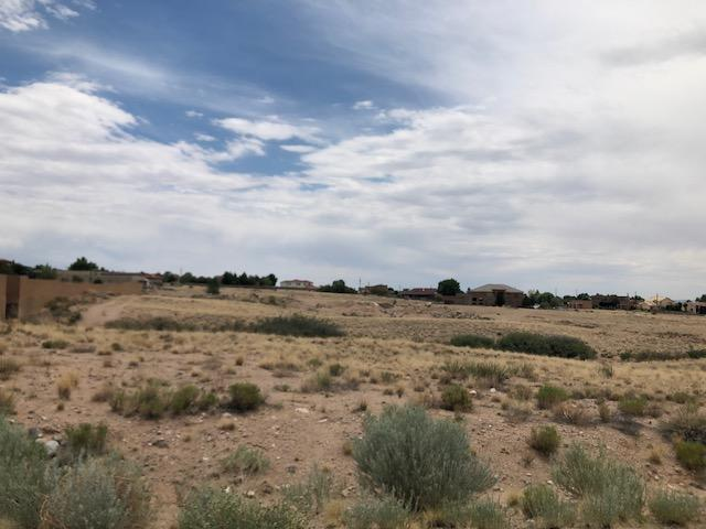 Paseo Del Norte Avenue NE, Albuquerque, NM 87122 (MLS #923152) :: Your Casa Team