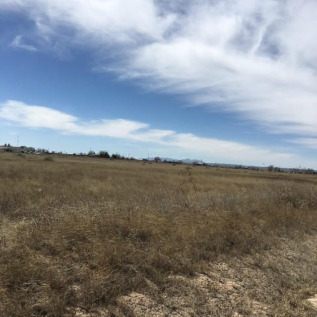 Jade Avenue, Moriarty, NM 87035 (MLS #923588) :: The Bigelow Team / Realty One of New Mexico