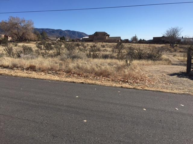 Elena NE, Albuquerque, NM 87122 (MLS #925170) :: The Bigelow Team / Realty One of New Mexico