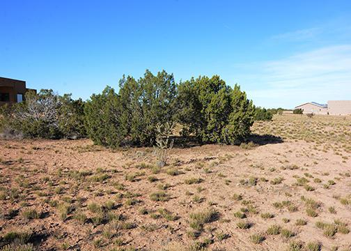 5 Horseshoe Loop, Placitas, NM 87043 (MLS #925177) :: Campbell & Campbell Real Estate Services