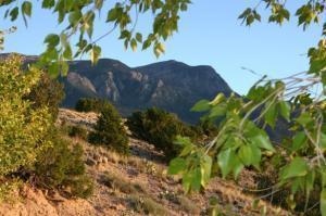 10 Casa Terrenos, Placitas, NM 87043 (MLS #925939) :: Campbell & Campbell Real Estate Services