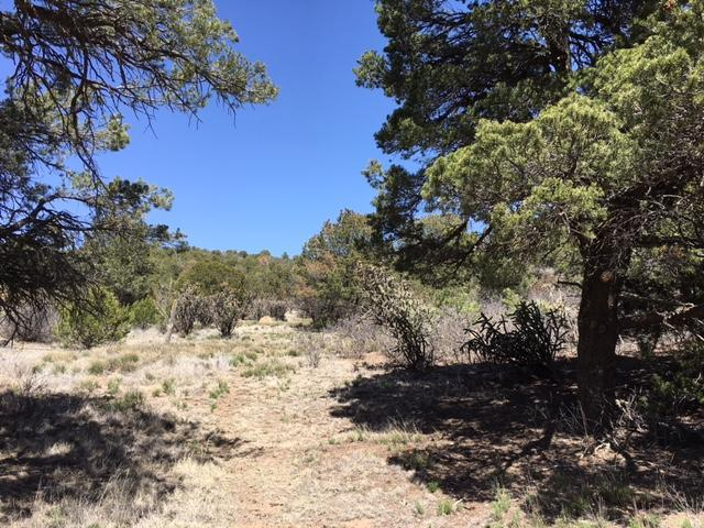 0 County Line Road, Edgewood, NM 87015 (MLS #926919) :: Campbell & Campbell Real Estate Services