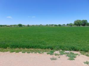 Guinea Lane, Los Chavez, NM 87002 (MLS #929555) :: The Bigelow Team / Realty One of New Mexico