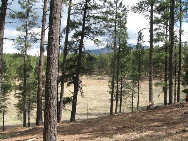 Lot6 Unit9 Sierra Los Pinos, Jemez Springs, NM 87025 (MLS #930081) :: Campbell & Campbell Real Estate Services