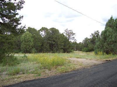 37 Bobolink Lane, Tijeras, NM 87059 (MLS #930372) :: Campbell & Campbell Real Estate Services