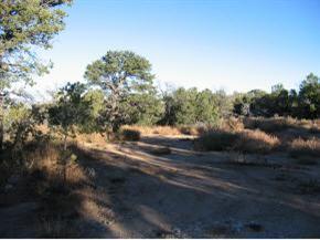 Pinon Park Estates, Sandia Park, NM 87047 (MLS #930622) :: Campbell & Campbell Real Estate Services