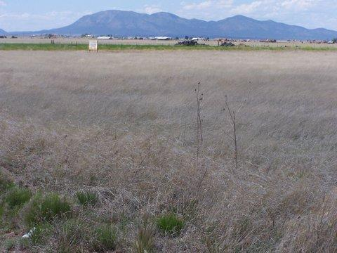 0 Captian Street, Moriarty, NM 87035 (MLS #933534) :: Campbell & Campbell Real Estate Services