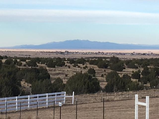 Lot 6 Block 6, Woodland Hills, Moriarty, NM 87035 (MLS #933638) :: The Bigelow Team / Realty One of New Mexico