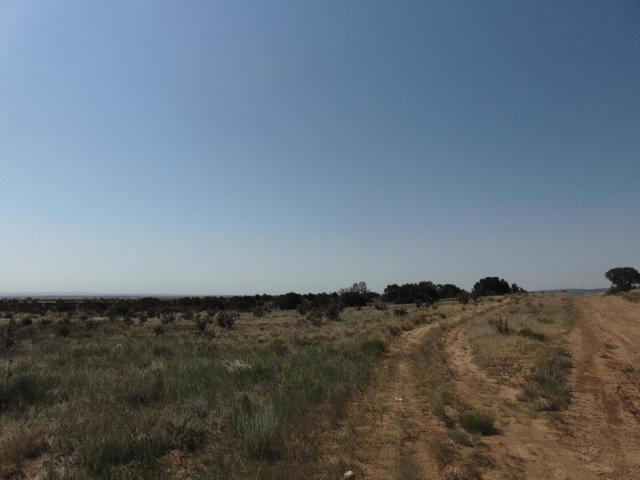 Horton And Entranosa, Edgewood, NM 87015 (MLS #933753) :: Campbell & Campbell Real Estate Services