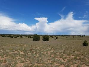 Hwy 42, Willard, NM 87063 (MLS #934884) :: Campbell & Campbell Real Estate Services