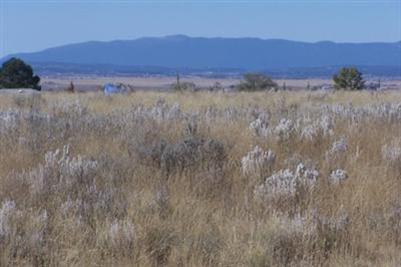 0 Bay Street, Moriarty, NM 87035 (MLS #936560) :: Campbell & Campbell Real Estate Services