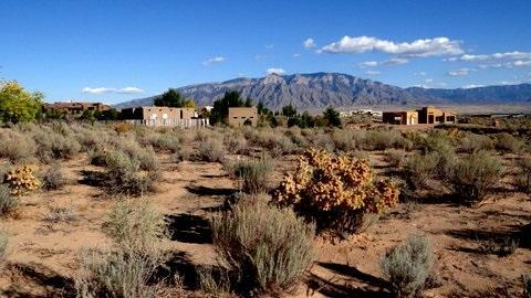 Lot 9 Don Julio, Corrales, NM 87048 (MLS #937466) :: Campbell & Campbell Real Estate Services