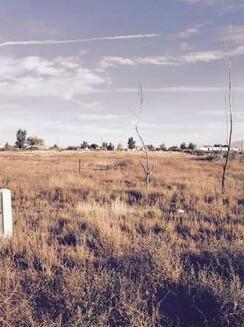 86 Primero Road, Los Lunas, NM 87031 (MLS #938244) :: Campbell & Campbell Real Estate Services