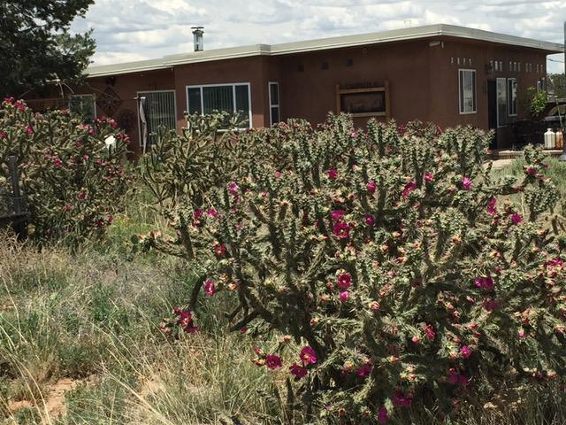 RA 1740 C State Highway 122, Prewitt, NM 87045 (MLS #938777) :: The Bigelow Team / Realty One of New Mexico