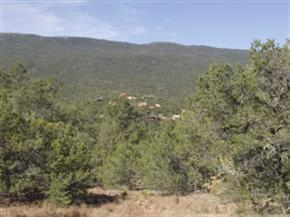 121 Vista Del Cielo, Cedar Crest, NM 87008 (MLS #939072) :: Campbell & Campbell Real Estate Services