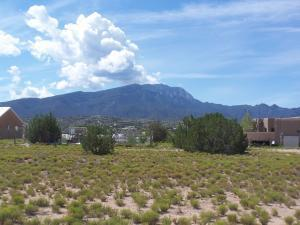 4 Horseshoe Loop, Placitas, NM 87043 (MLS #940488) :: Campbell & Campbell Real Estate Services