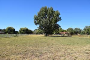 6767 Corrales Rd Road NW, Corrales, NM 87048 (MLS #941553) :: Campbell & Campbell Real Estate Services