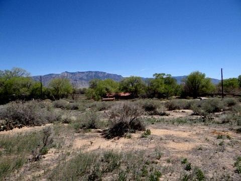 W Ella Road, Corrales, NM 87048 (MLS #941645) :: Campbell & Campbell Real Estate Services